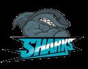 sharksbad