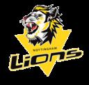lions-default